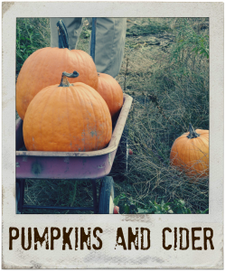 Pumpkins and Cider
